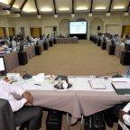 SOLD: How Ramaphosa Managed